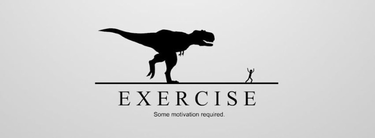 facebook_cover_photo_funny_exercise_motivation-851x315